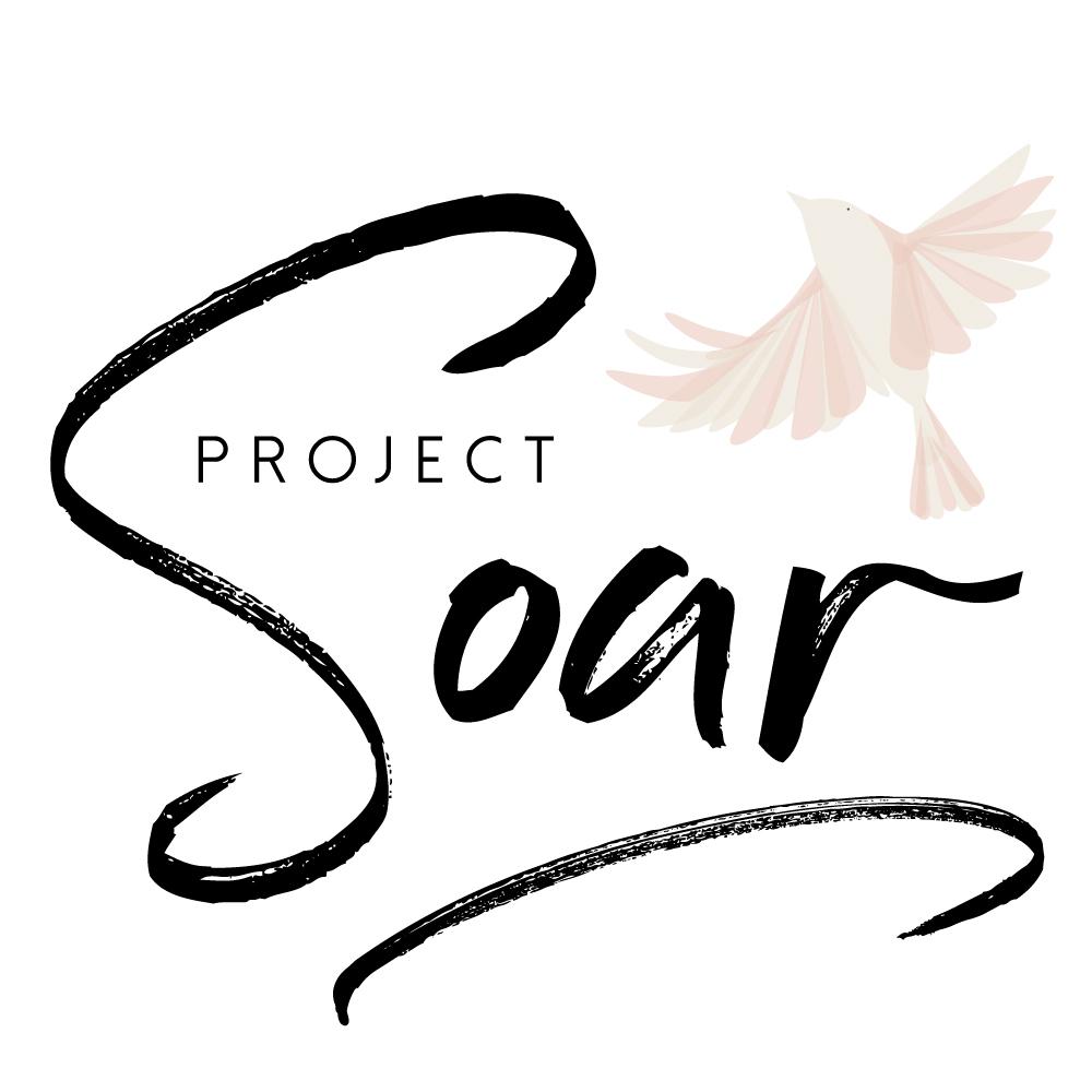 pproject soarArtboard original